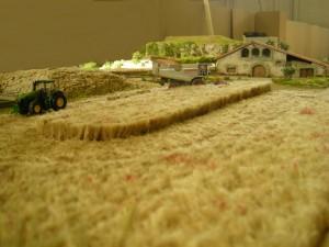 El camp de blat