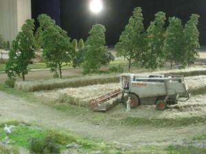 Camp de blat. Trobada de mòduls de Pallejà, 04/04/2008