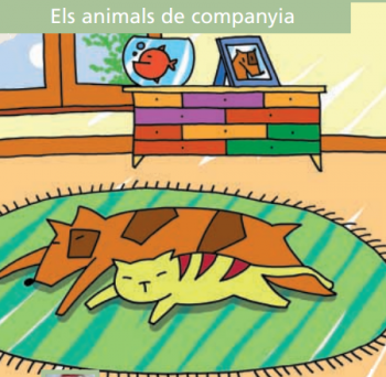 AjBCN animals companya
